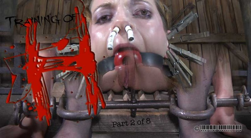 Training of H Part 2 - realtimebondage - HD/MP4 - image1