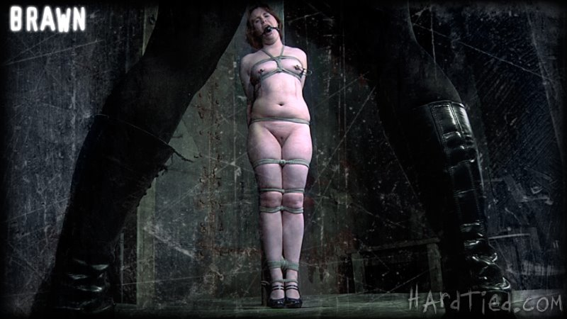 Brawn - hardtied - HD/MP4 - image1