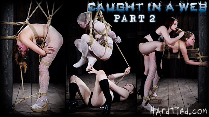 Caught in the Web Part Two - hardtied - HD/MP4 - image1