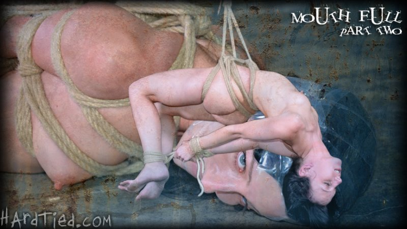 Mouth Full Part Two - hardtied - HD/MP4 - image1