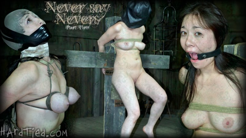Never Say Nevers Part Two - hardtied - HD/MP4 - image1