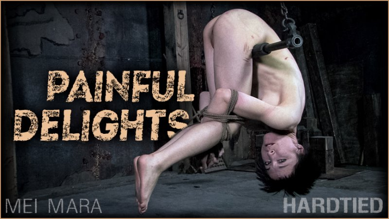 Painful Delights - hardtied - HD/MP4 - image1
