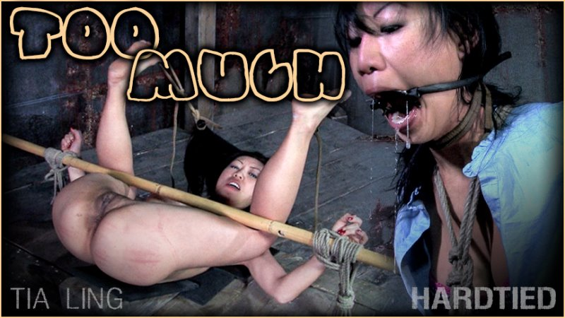 Too Much - hardtied - HD/MP4 - image1