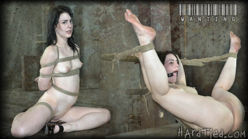 Wanting - hardtied - HD/MP4 - image1